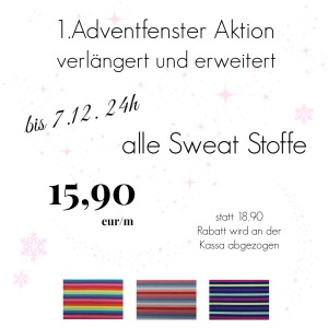 1.1.AdventfensterNewsletter Kopie